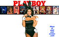Playboy Bunny Series 02 - playboy wallpaper