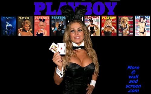Playboy wallpaper entitled Playboy Bunny Series 05 - Carmen Electra