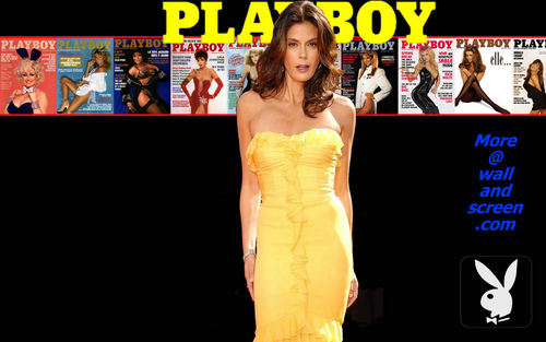 Playboy wallpaper containing a dinner dress entitled Playboy Celebrity Series 08 - Terri Hatcher