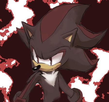 Nhím Shadow hình nền called Shadow