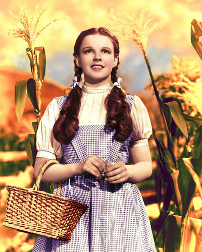 The Wizard of Oz wallpaper probably containing a bouquet titled Stills