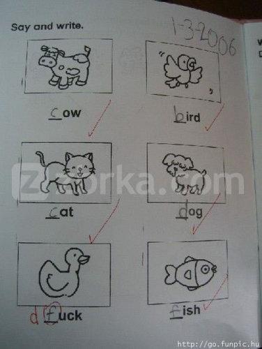 Test..... A+