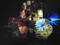 by izzzolda - eddie-redmayne wallpaper