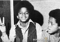 marlon & michael - marlon-jackson photo