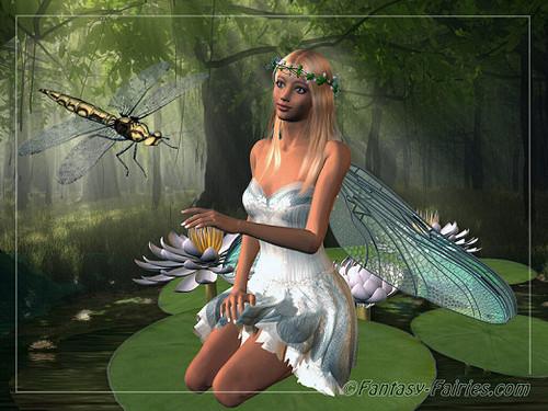 مزید fairys pixies