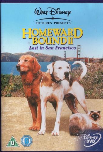 my Homeward Bound 壁纸