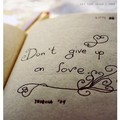 never give up - what-is-love photo