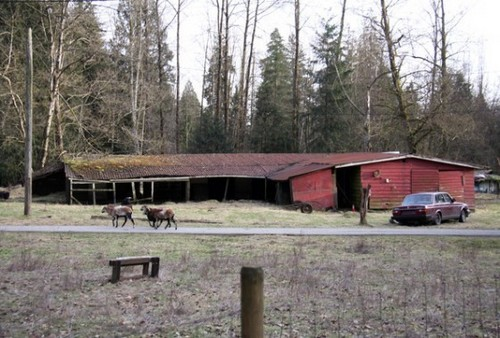 Breaking Dawn Filming News: picha Of The Bella's House & Jacob's House