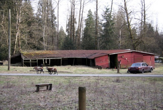 Breaking Dawn Filming News: mga litrato Of The Bella's House & Jacob's House