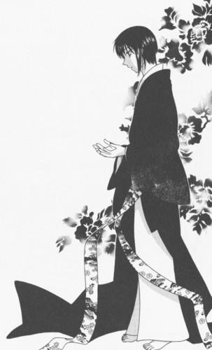 Akito in Manga
