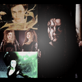 Bellatrix Lestrange: EPICNESS! - harry-potter-vs-twilight photo