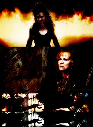 Bellatrix vs Molly