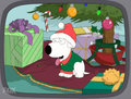 Brian Griffin - family-guy photo