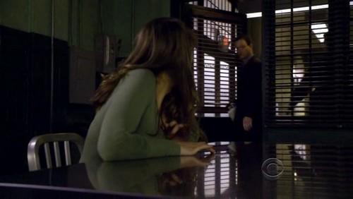 Lauren Cohan achtergrond titled CSI:NY 6x13