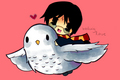 চিবি Harry and Hedwig