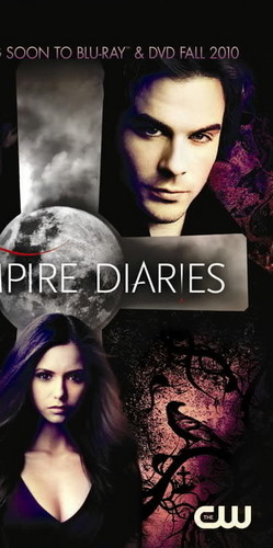 Damon & Elena wallpaper with a portrait titled De comic con poster