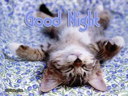 Good Night Susie I'm Done lol !