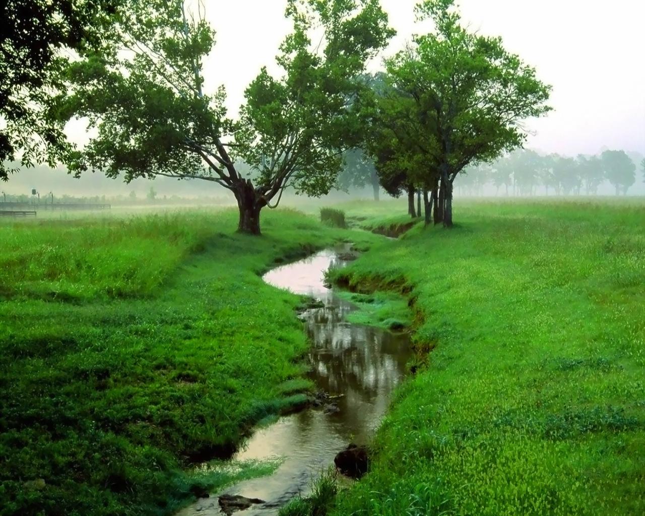 Green Field Green Foto Fanpop