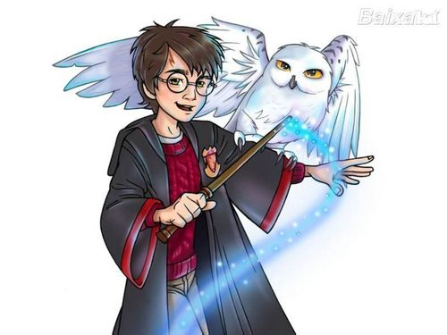 harry potter wallpaper entitled Harry and Hedwig