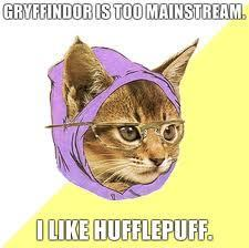 Hipster Kitty for Hufflepuff :) x