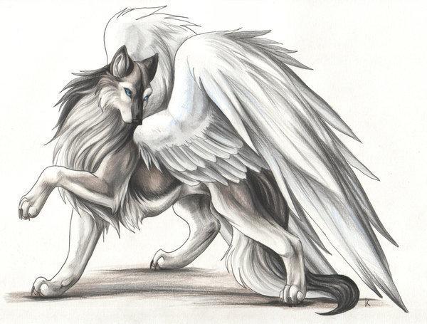My winged serigala