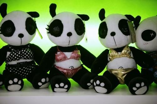 Panda wearing bikini