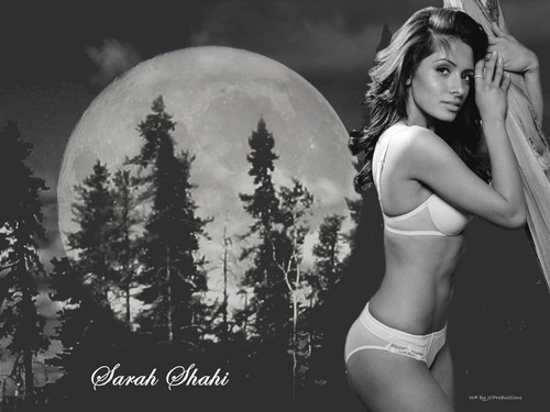 Super Sexy Sarah Shahi in The Moon Light - sarah-shahi Wallpaper