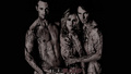 True Blood Wallpaper - alexander-skarsgard wallpaper