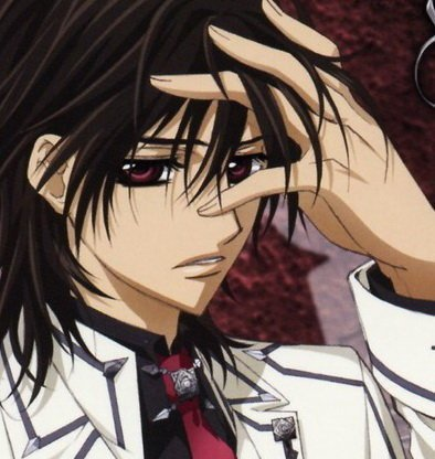 Vampire Knight - kaname-vs-zero Fan ArtZero And Kaname Vampire Knight