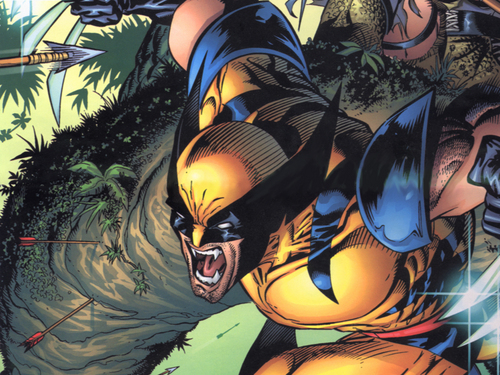 Wolverine images Wolverine HD wallpaper and background photos