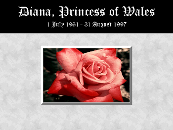 Princess Diana پیپر وال probably with a rose, a rose, and a bouquet titled england's rose
