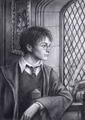 harry Potter pencil portrait