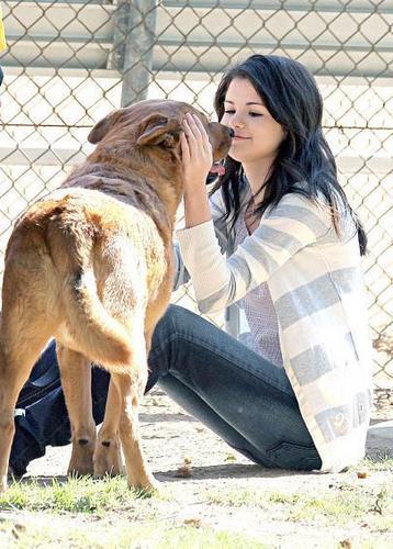 selena and a dog cute
