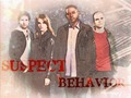 *Suspect Behavior* - criminal-minds-suspect-behavior wallpaper