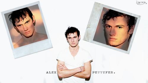 AlexP.