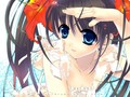 Anime Wallpaper - funkyrach01 wallpaper