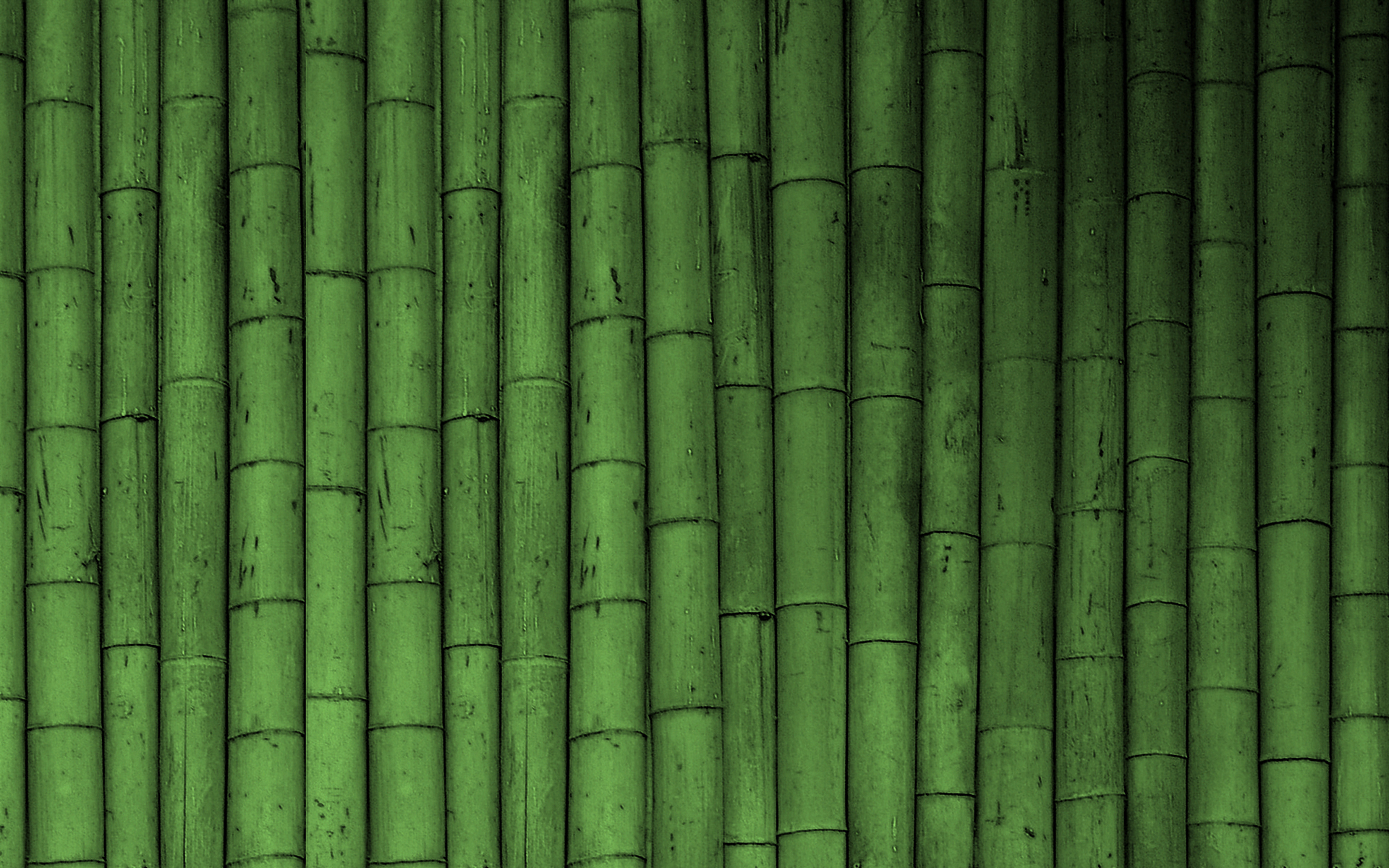 bamboo wallpaper green wallpaper 19784745 fanpop