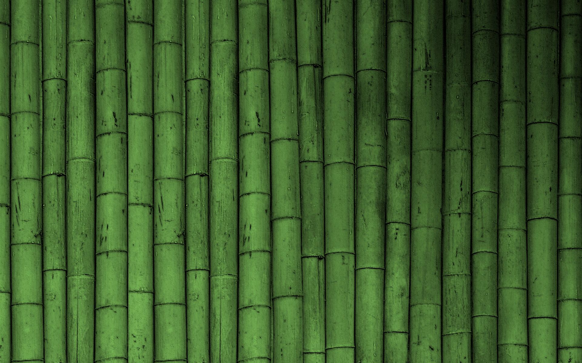 Bamboo wallpaper green wallpaper 19784745 fanpop for Bamboo wallpaper