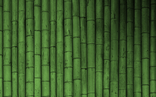 Bamboo Wallpaper - green Wallpaper