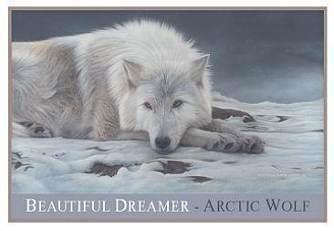 Beautiful Dreamer ❤
