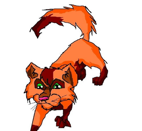 The Blazing Star Warriors: Warrior Cats The Prophecies Begin Quiz