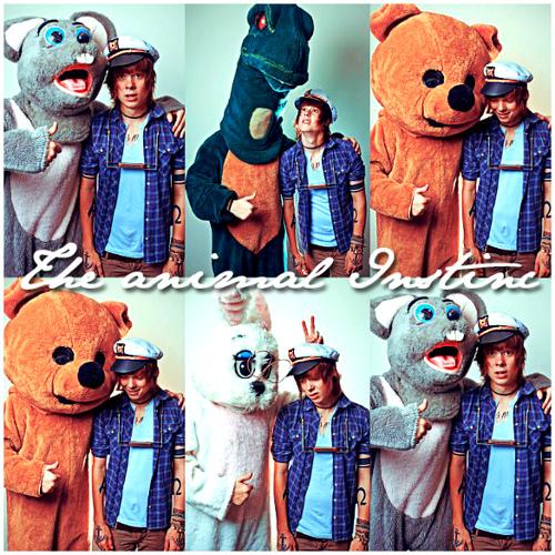 Chris Drew and his animal buddies