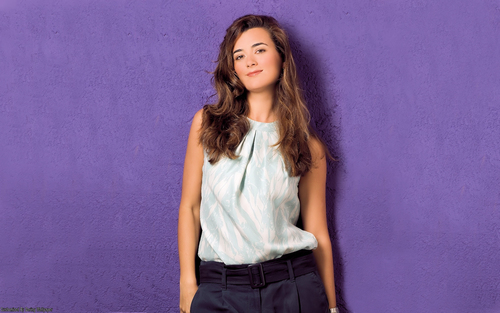 Cote de Pablo wallpaper probably with bellbottom trousers, a playsuit, and a well dressed person called Cote De Pablo Wallpaper