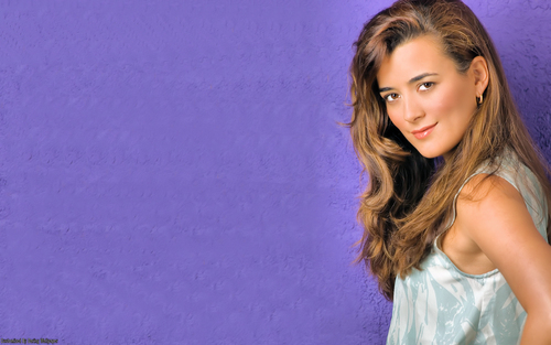 Cote de Pablo fond d'écran probably with a portrait entitled Cote De Pablo fond d'écran