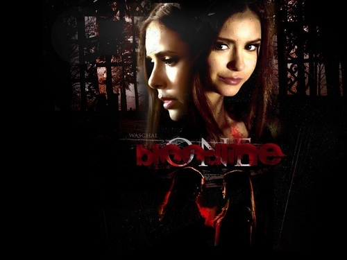 Elena Gilbert wallpaper possibly with a portrait titled Elena Gilbert ❤