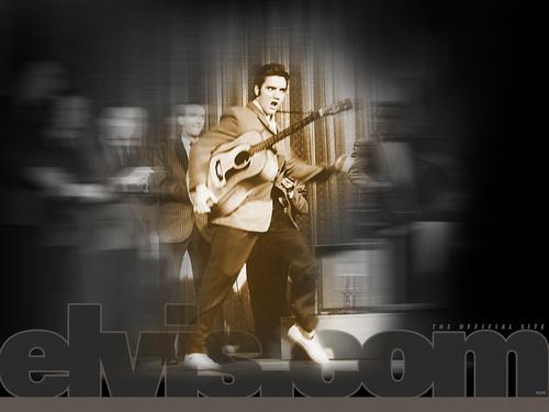 elvis presley fondo de pantalla entitled Elvis