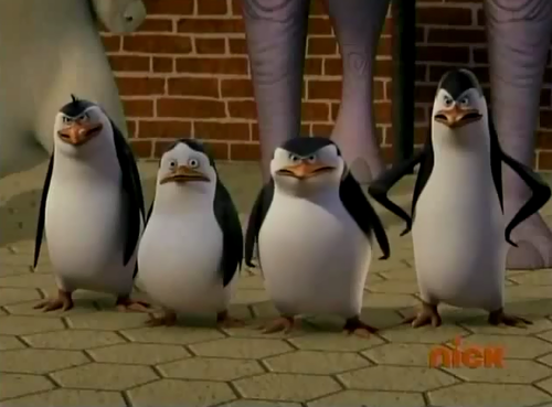 Four Angry Penguins