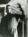 Halloween movies - michael-myers photo