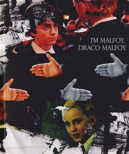 I'm Malfoy. Draco Malfoy