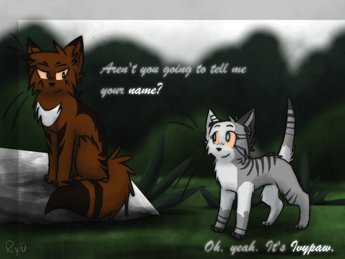 Ivypaw with hawkfrost
